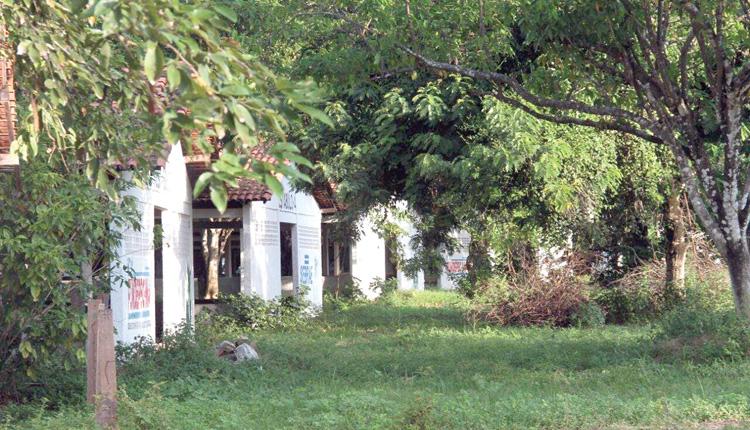 Área dos estábulos do Parque Independência; foto: Biaman Prado, de O Estado